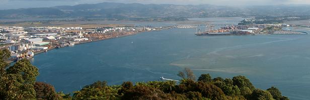 Port of tauranga walking  tours