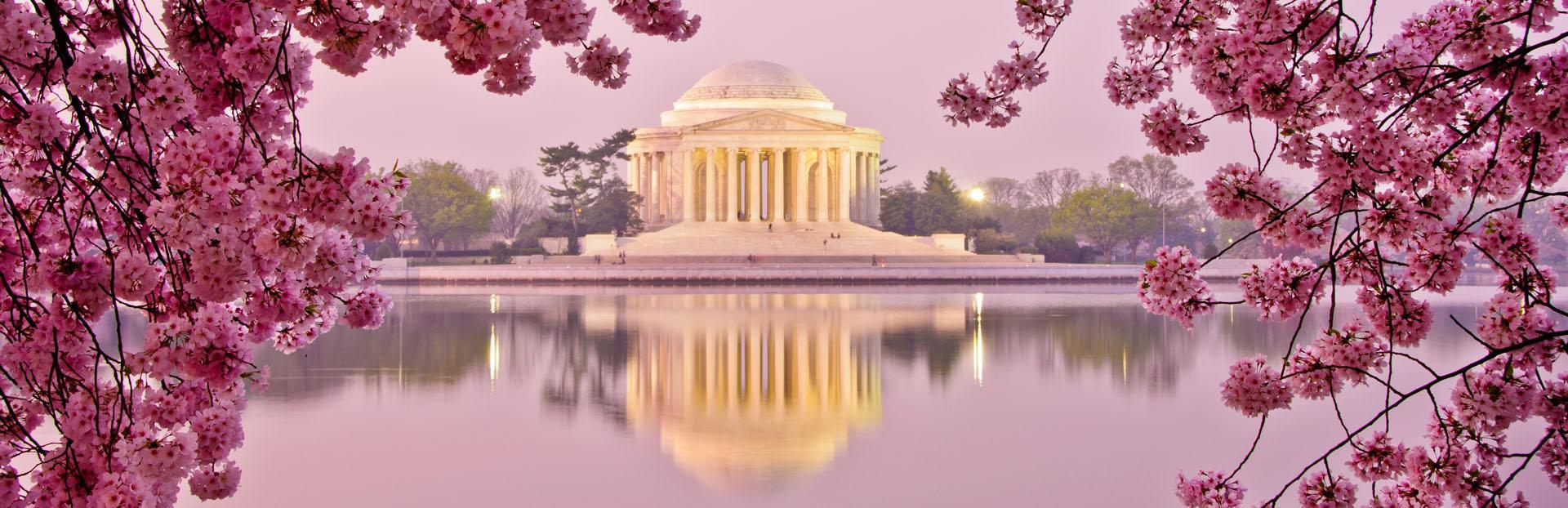 Washington, D.C. audio tour: A Blossoming Friendship
