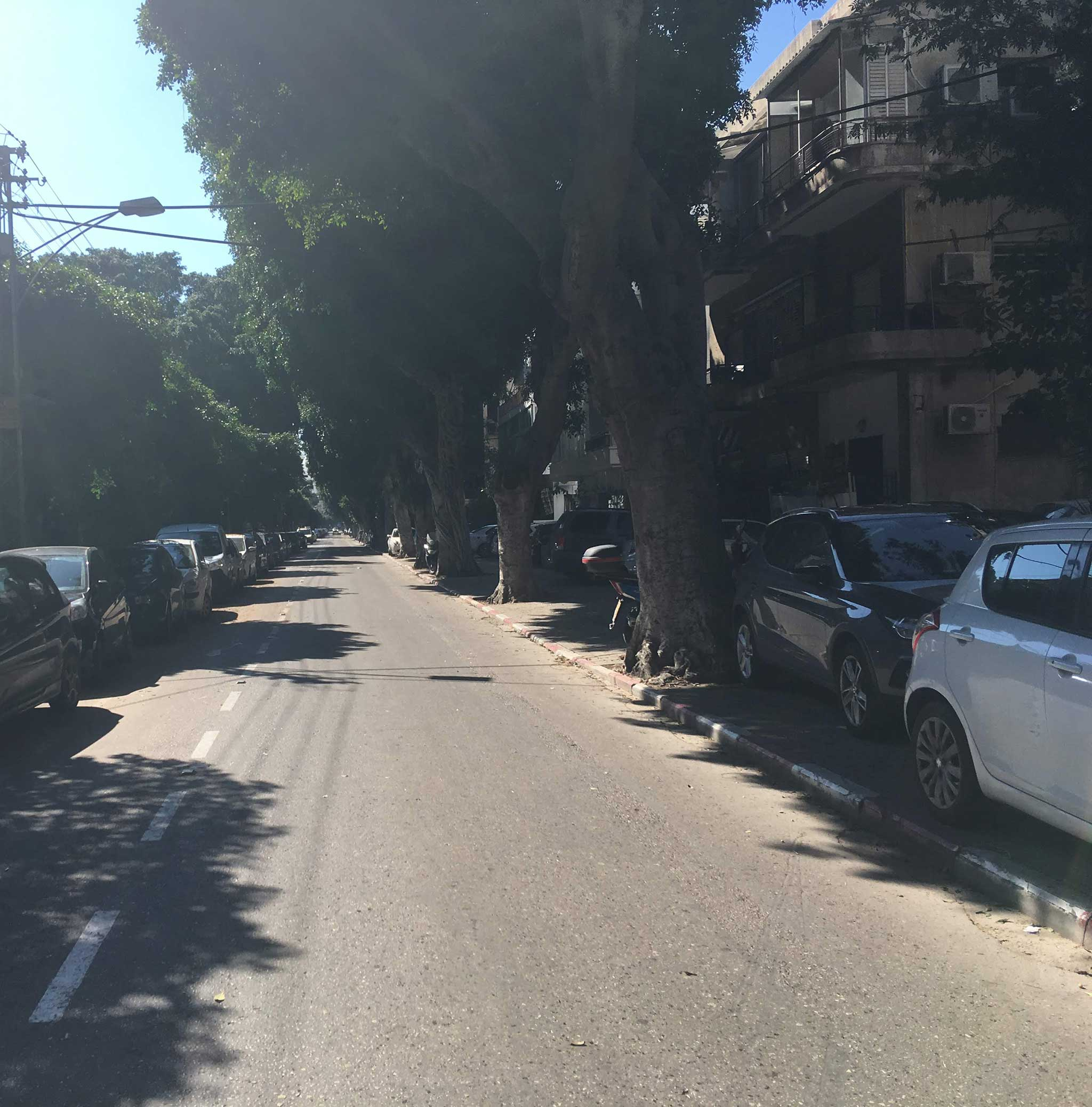 To Reines Street on Tel Aviv audio tour The White City