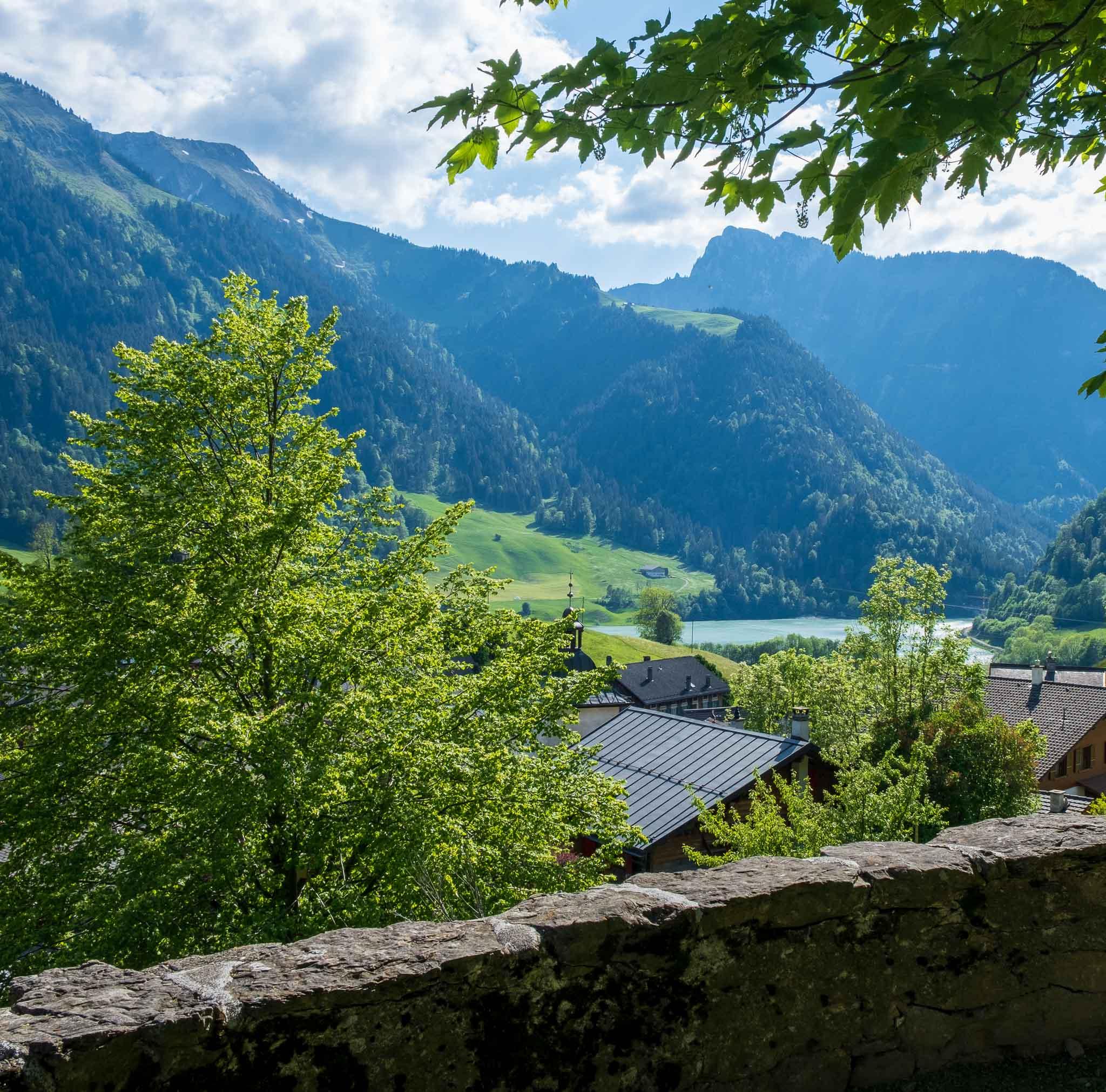 Oak Tree on Rossinière audio tour Cowbells, Chalets and Balthus: A Swiss Alpine Village Excursion
