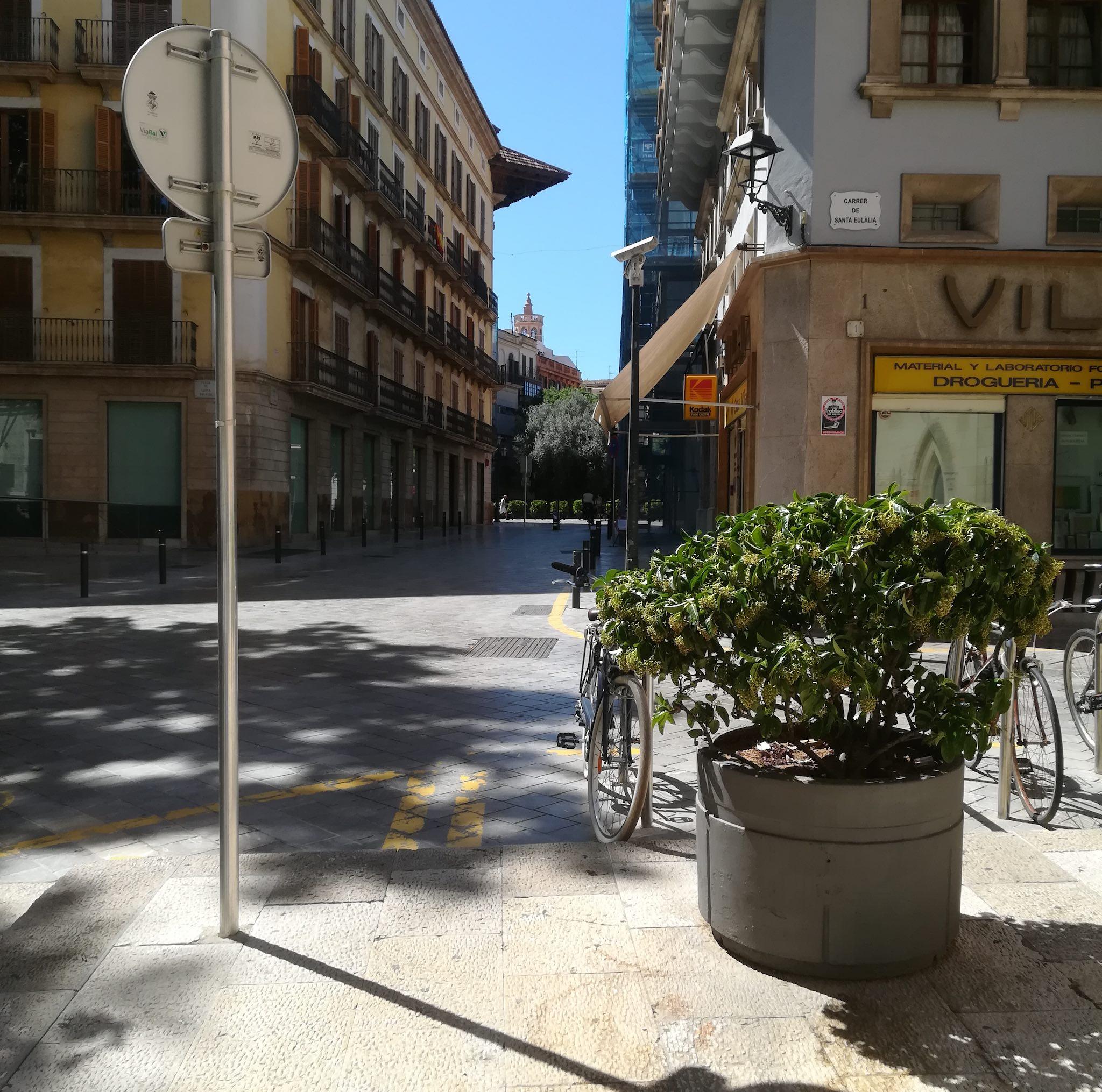 Towards Placa de Cort on Palma audio tour Palma's Alternative History Tour